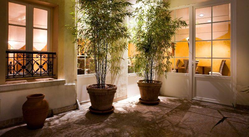 cour intérieure - hôtel acacias